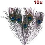 niceEshop(TM) 10Pcs x Natural Peacock Tail Feathers-Natuatal Color