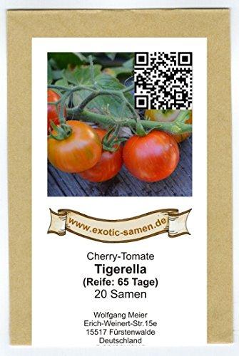Absolute Neuheit! Tigerella Cherry-Tomate – hervorragend für kühle Gegenden – auch für den Balkon – sehr frühe Sorte – 20 Samen