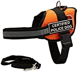 Dean & Tyler 's DT funktioniert orange Zertifiziert Polizei Hund Geschirr mit Brust Polsterung, große, und Schwarz 6ft Gepolsterte Puppy Leine.