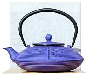 Cast Iron Purple Dragonfly tea pot kettle 0.8 litre Japanese Tetsubin style