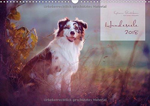 Hundeseele (Wandkalender 2018 DIN A3 quer): Hunde emotional fotografiert (Monatskalender, 14 Seiten ) (CALVENDO Tiere)