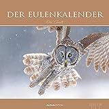Der Eulenkalender 2018 - Eulen - Bildkalender (33 x 33) - Tierkalender