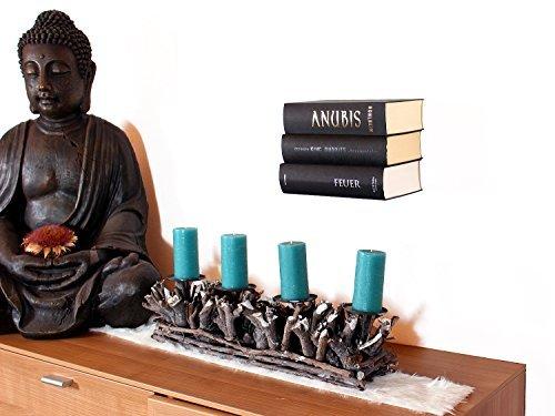 Schwebende Bücher: unsichtbares Regal für Bücher, originelle Bücherstütze mit bis zu 10kg...