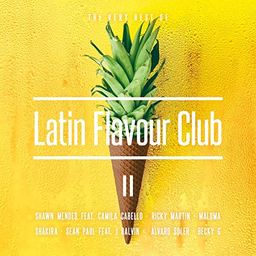 Latin Flavour Club-the Very Best of II (Latin Musik)