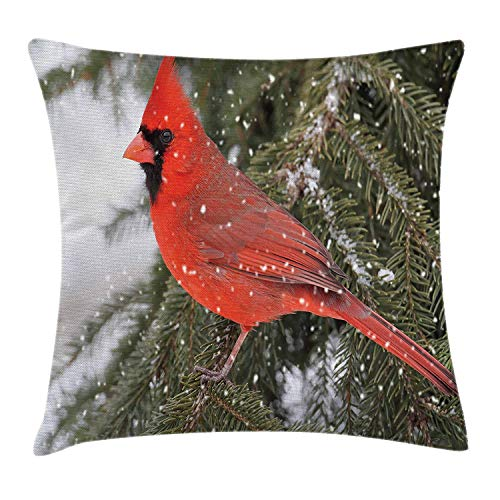 Pine Tree Branch (Juziwen Cardinal Throw Pillow Cushion Cover, Northern Cardinal Bird Standing on a Pine Tree Branch in Winter Season, Decorative Square Accent Pillow Case,Fern Green Ruby White 16x16inch)