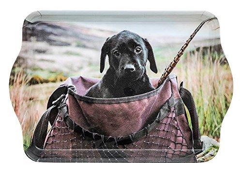 Labrador im Tasche Kleine Trinket/Schmuck/Schlüssel Tray/Tablett 21x14cm
