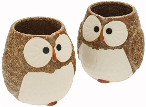 Kotobuki Ceramic Owl Cup (Set of 2), Brown by Kotobuki - Kotobuki-cup