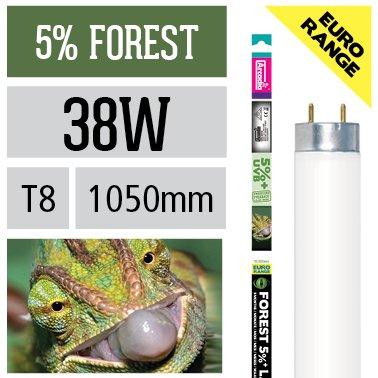 Arcadia 38 Watt D3+ Reptile Forest Lampe 5% UV-B