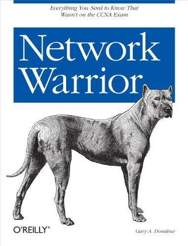 Lan Voip Wireless (Network Warrior (English Edition))