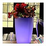 PK Grüne LED Blumenvase | 50cm Hoch Beleuchteter Blumentopf Light + Remote | Schnurlose wiederaufladbare freistehende dekorative Stehleuchte | Farbwechsel RGB Beleuchtung für Wohnzimmer, Garten, Hochzeit