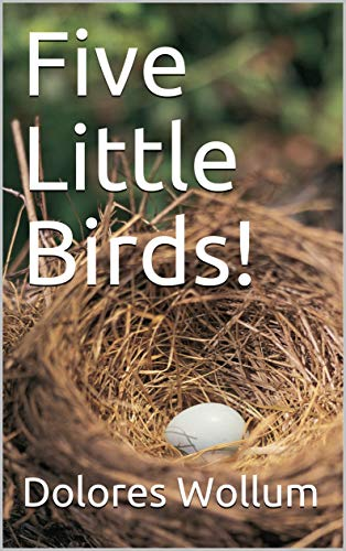 Five Little Birds! (English Edition)