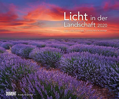 Licht in der Landschaft 2020 - Wandkalender 58,4 x 48,5 cm - Spiralbindung - 1 Licht Landschaft Licht