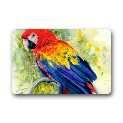 121 Terry (Icndpshorts Fashion Decorative Door Mat Rug Oil Painting Parrot Art Indoor/Outdoor/Floor Doormat 23.6