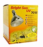 Lucky Reptile BSD-70 Bright Sun UV Desert, 70 W, Metalldampflampe für E27 Fassung mit UVA und UVB Strahlung (Vorschaltgerät erforderlich)