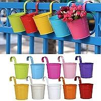 Lot de 10Pot de fleurs à suspendre en fer avec crochets amovibles et trous de drainage, pour décoration de la maison, du jardin ou du balcon. 10Pack