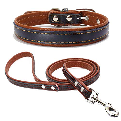 TFENG Hundehalsband, Verstellbarer Lederhalsband Basic Bling Halsbänder mit Leinefür Katzen und Hunde(Braun,L)