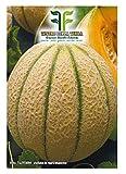 120 C.ca Semi Melone Retato Degli Ortolani - Cucumis Melo In Confezione Originale Prodotto in Italia - Meloni retati