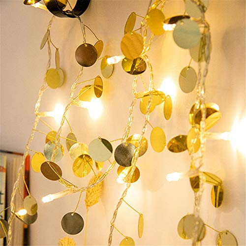 Led Gold Slice Led Fairy Light String String Funzionamento A Batteria Wedding Christmas Outdoor Garden Garland Decoration Gold 2 Metri 20Lamps (Batteria)