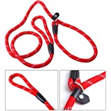 Ecloud Shop 2 pieces Pet Dog Nylon Adjustable Loop Slip Leash Rope Lead 10mm