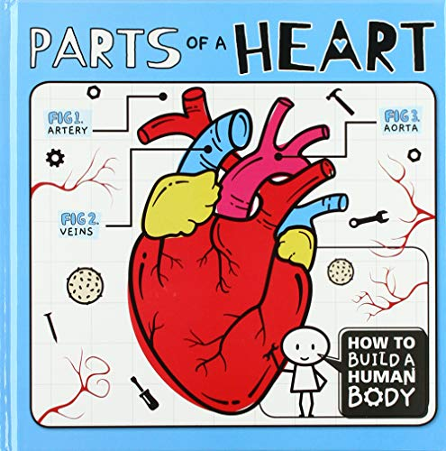 Parts of a Heart (How to Build a Human Body)