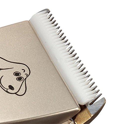Wawoo® Tierhaarschneider Keramik-Rasiererkopf Leise Harrschneidermaschine Tierhaartrimmer Tierhaarschneidemaschine Set mit 4 Kammaufsätzen 3/6/9/12mm + 2x Akku Schermaschine Hunde Katzen(Schwarz) - 5