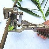 Lianqi Nuevo Estilo Profesional en forma de V Herramienta de injerto Tijeras Vacunación Cuchillo de corte Pruner Jardín y huerta Herramientas para el injerto Bonsai árboles frutales y vides