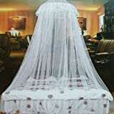 Greenlans White : Elegant Lace Insect Bed Canopy Netting Curtain Round Dome Mosquito