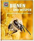 Bienen und Wespen. Flüssiges Gold und spitzer Stachel