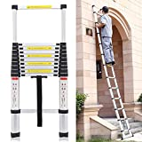 Best Ladders - Quieting 3.2M Multi-Purpose Aluminium Telescopic Ladder DIY Portable Review