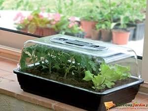 Déco serre rigide avec aérateurs anti condensation