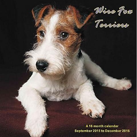 Wire Fox Terriers Calendario Calendar 2016