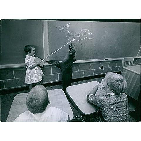 Vintage Foto Di Giorni Sono Ancora Qui, Ma in questa scuola (Hoover scuola, Mason City, jowa) sembra school-days hanno trasformato in Seal giorni. Guarnizione in classe con gli studenti.
