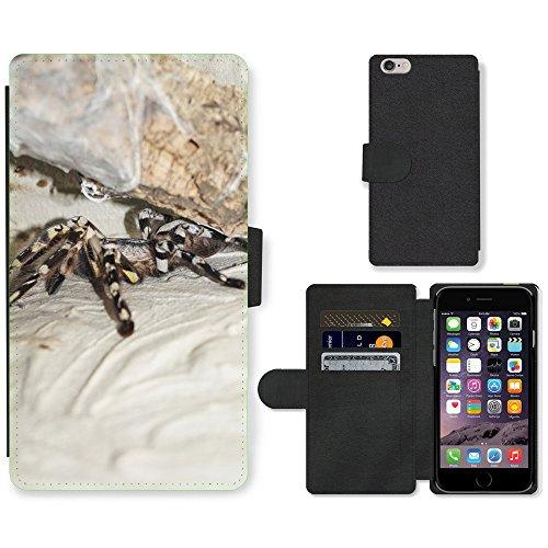 Just Mobile pour Hot Style Téléphone portable étui portefeuille en cuir PU avec fente pour carte//m00139172Saut araignée Tarentule Arachnid//Apple iPhone 6Plus 14cm