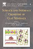 Surface and Interface Chemistry of Clay Minerals: Volume 9 (Developments in Clay Science)