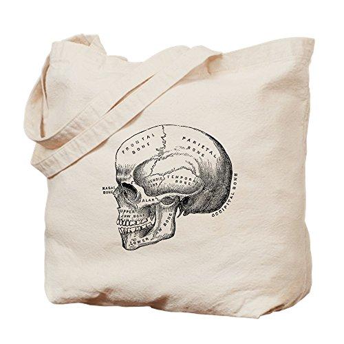 CafePress–Anatomie–Leinwand Natur Tasche, Reinigungstuch Einkaufstasche Tote S khaki