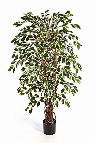 artplants – Kunstpflanze Ficus JARLAN mit 1245 Blättern und lianenartigem Stamm, grün-weiß, 210 cm – Deko Baum/Kunst Ficus