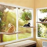 Dottoressa Nezix Cat Window Perch - robusto guscio di finestra del gatto con forte tazza di aspirazione e cavi in acciaio inossidabile fino a 50 libbre di finestra montata Cat Bed & Cat Sunny Seat - fornisce confortevole Sunbath e guardando Spot per Kitty