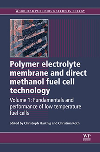 Polymer Electrolyte Membrane and Direct Methanol Fuel Cell Technology: Volume 1: Fundamentals and Performance of Low Temperature Fuel Cells (Woodhead Publishing Series in Energy) (Low Energy Membrane)