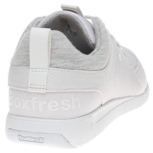Boxfresh Aggra Homme Baskets Mode Blanc Blanc