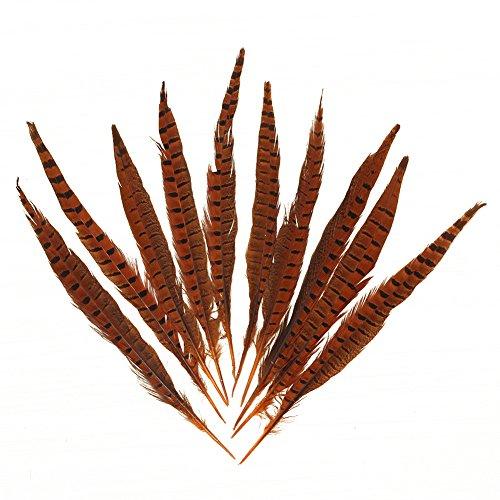 ahn-Fasan-Schwanz-Federn 12-14 Zoll-langes Kostuem-Dekor Millinery Farbe: Orange Quantitaet: 100 PCS (Tanz Kostüme Hut Schwänze)