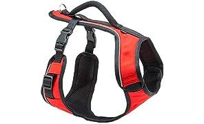PetSafe EasySport Arnés para Perro, Ajustable Acolchado con asa de Control y Ribetes Reflectantes, arnés Easy Walk