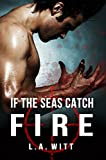If The Seas Catch Fire (English Edition)