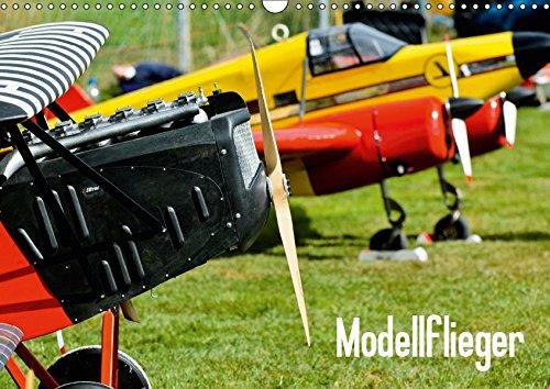 Modellflieger (Wandkalender 2019 DIN A3 quer): Faszinierende Flugzeugmodelle im Flug fotografiert. (Monatskalender, 14 Seiten ) (CALVENDO Hobbys)