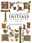 Illuminated Initials in Full Color - 548 Designs