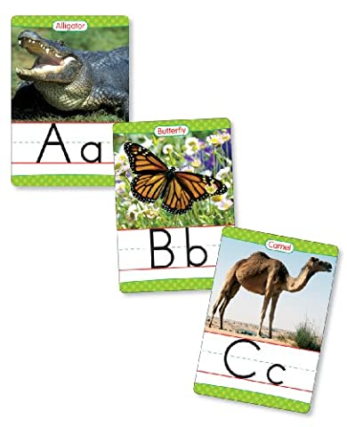 Animals from A to Z Alphabet Set: Manuscript: 26 Ready-To-Display Letter Cards with Fabulous Photos of