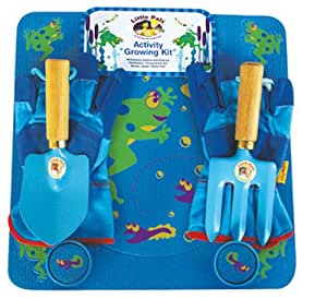 Activity Growing Kit - Frog