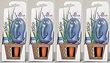 4er-Set Bewässerungskugel Wasserspender *Bördy L* in blau - H20cm