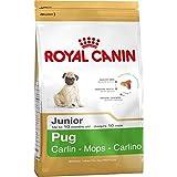 Crocchette Royal Canin per razza Carlino Cucciolo fino a 10 mesi di vita - formato gr.500