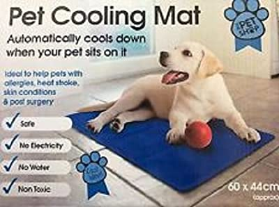 Dog Cat Pet cooler Cooling Cool Gel Mat Bed Pad 60 x 44cm Blue By MAXCARE