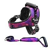 Ondoing No-Pull Hundegeschirr Einstellbar Haustier Brustgeschirr Gepolstert Reflektierend für Mittlerer Große Hunde (L, Purple Set)